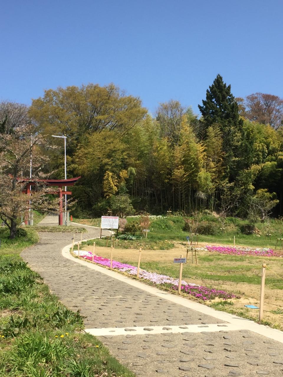 おみさか花広場 信夫山 しのぶやま 福島市